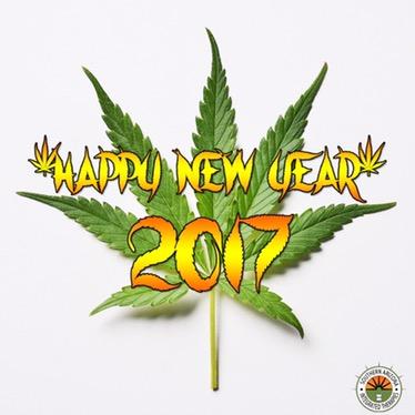 2017 Happy New Year Marijuana Tucson SAINTS