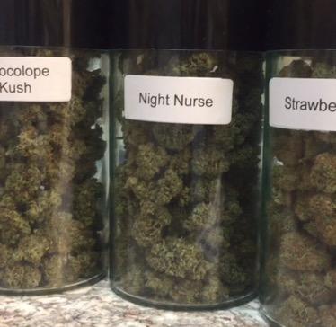 Chocolope Kush Night Nurse Strawberry Cough
