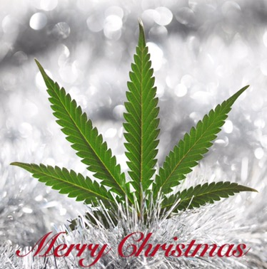 merry-christmas-tucson.jpg