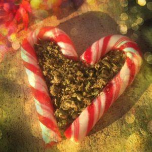 peppermint candy cane marijuana