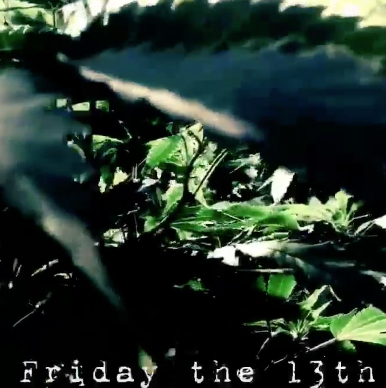 G-13-STRAIN-Marijuana-Tucson