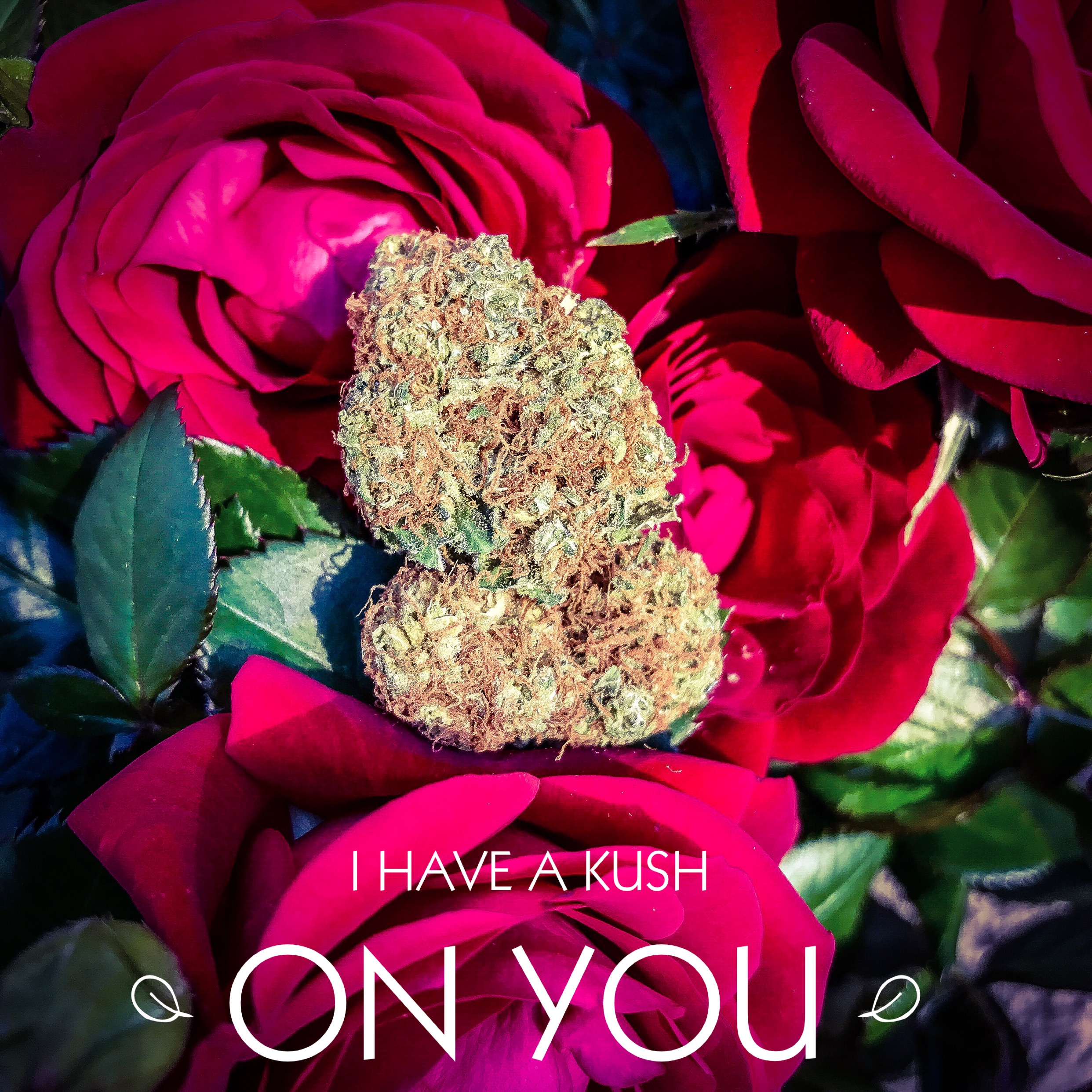 I-have-a-kush-on-you-valentines-marijuana-saints