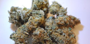 ourtrainwreck