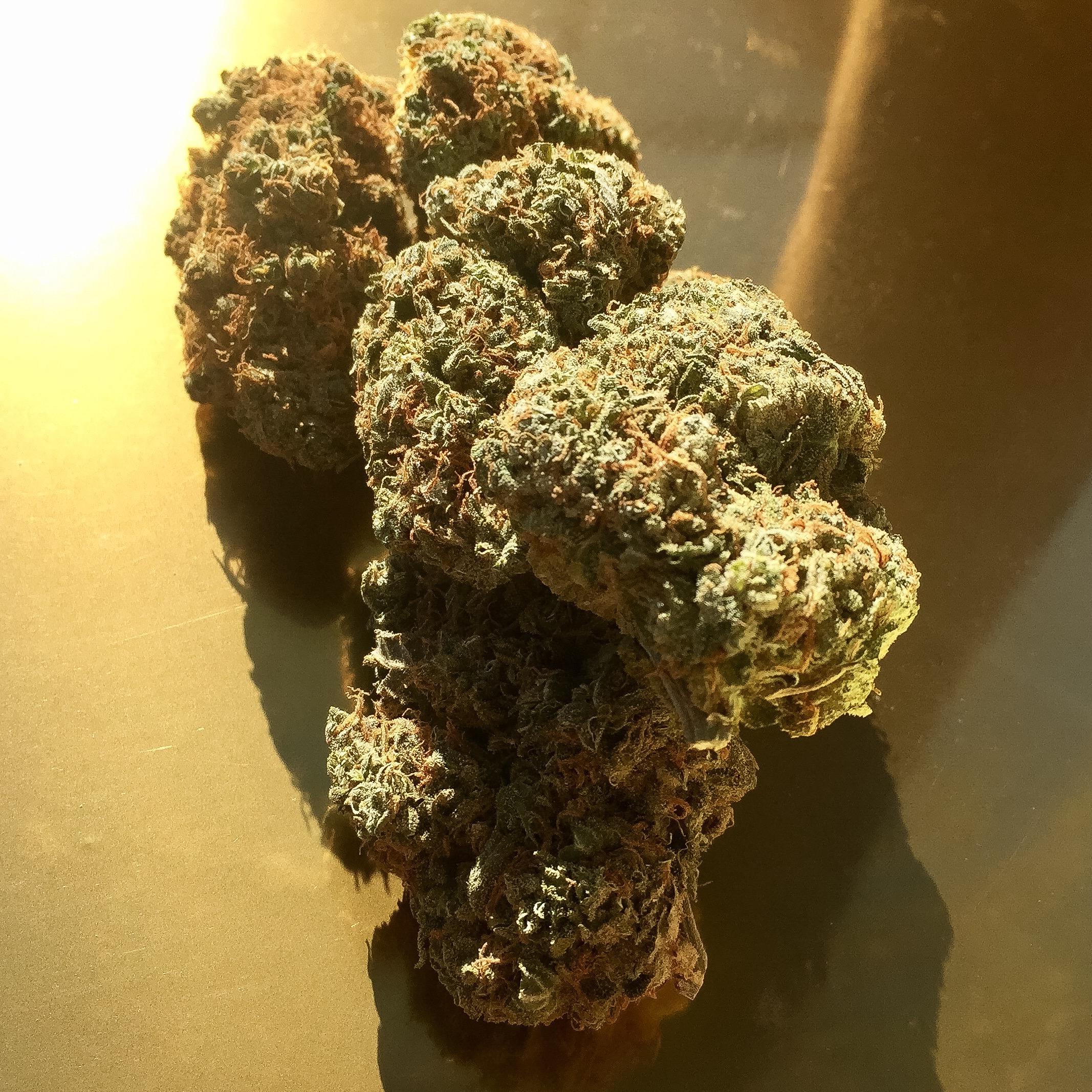 win-marijuana