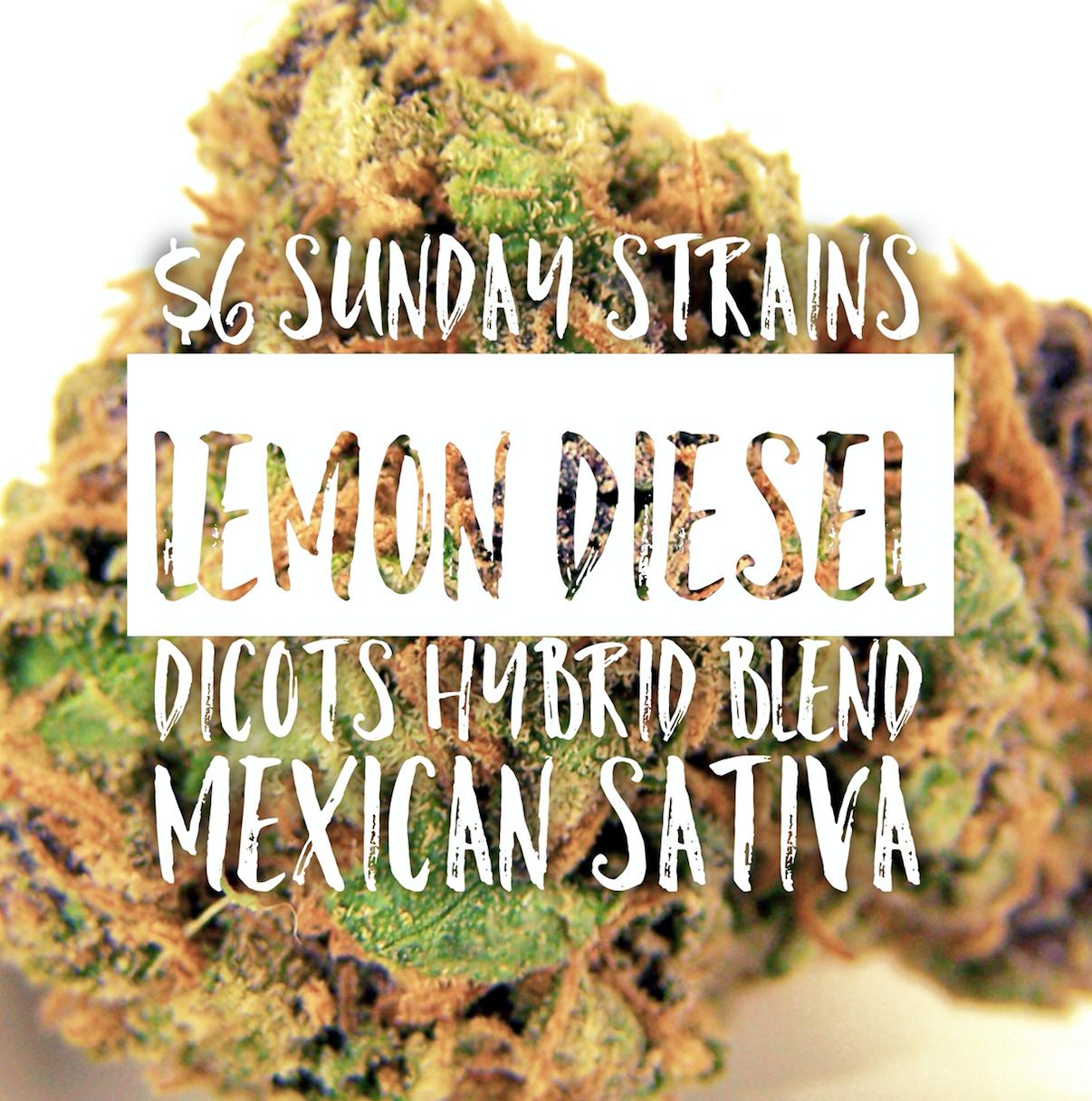 Lemon-Diesel-Indica-Dicots-Hybrid-Blend-Hybrid-Mexican-Sativa