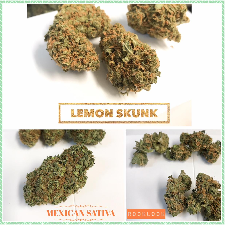 Lemon Skunk Rocklock Mexican Sativa