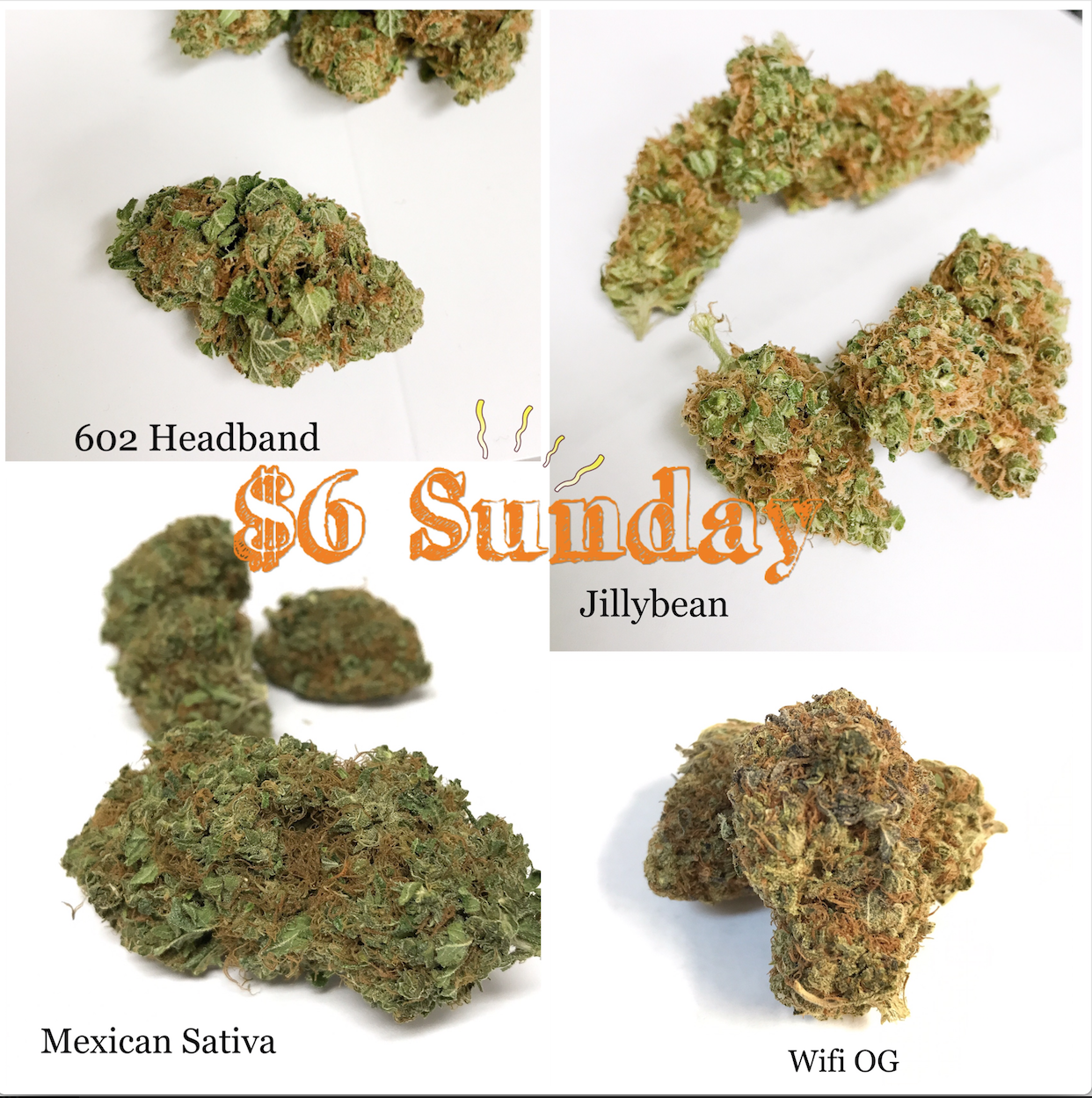 602 headband jillybean mexican sativa wifi OG-SAINTS