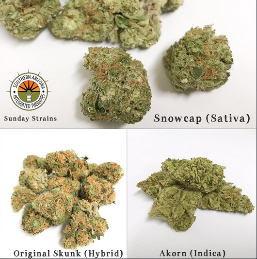 most popular dispensary in tucson marijuana cheap