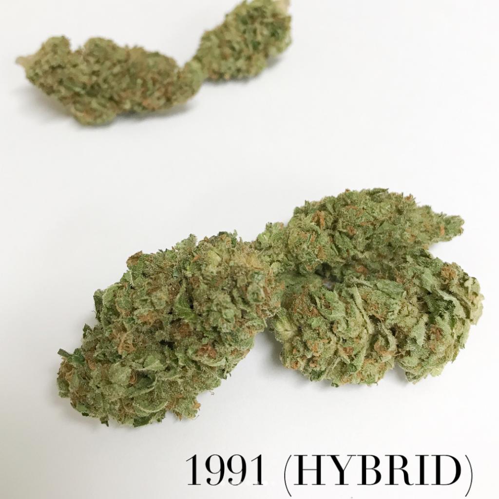 1991 Hybrid strain