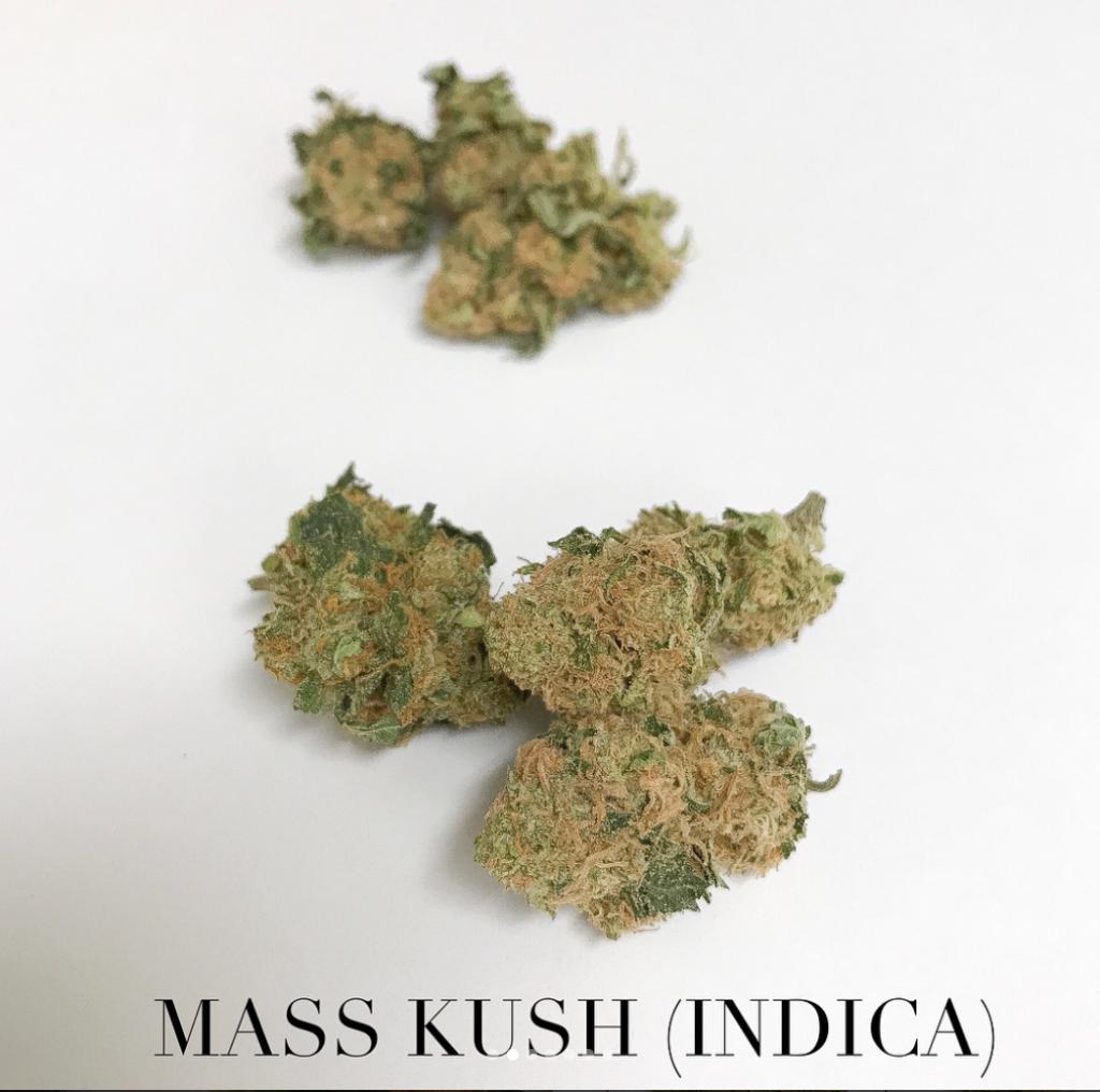 mass kush indica