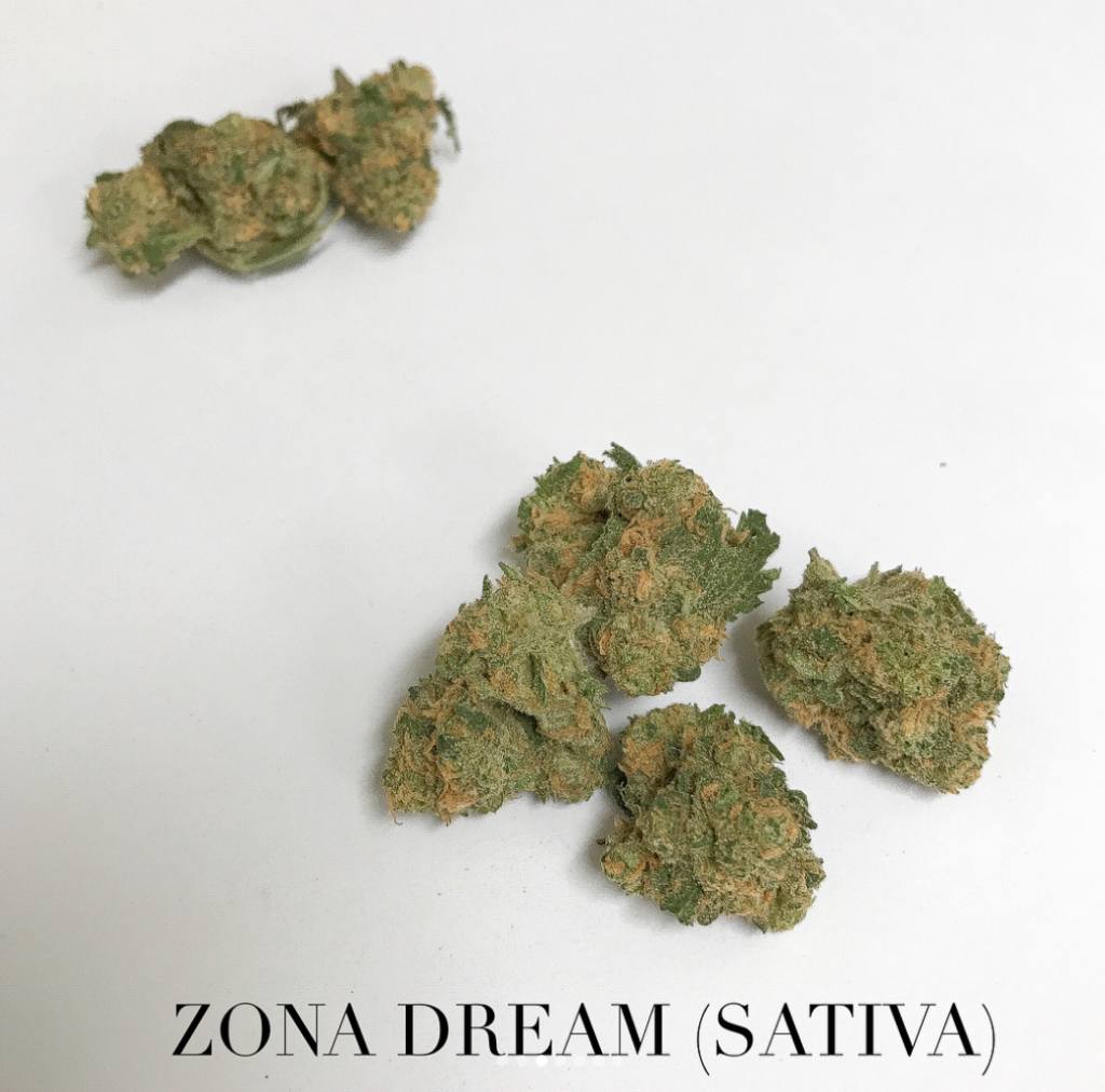 zona dream sativa