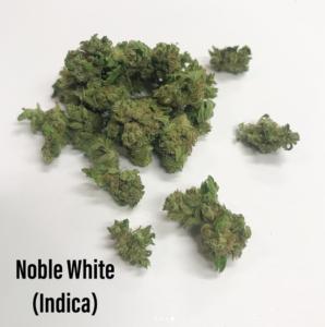 Noble White Indica