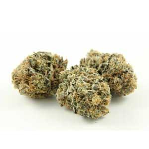 heavy-eighths-weed