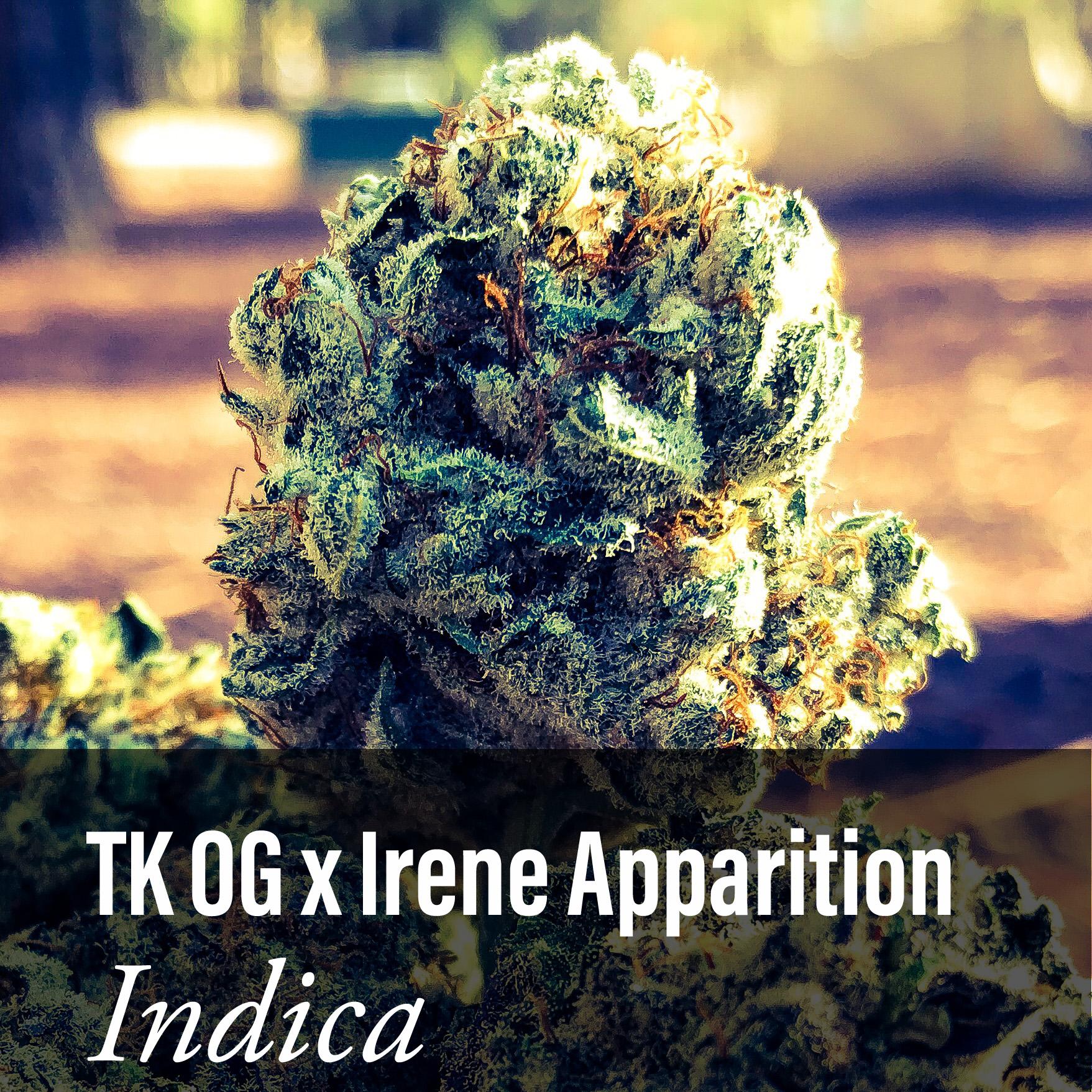 TK OG X Irene Apparition Indica