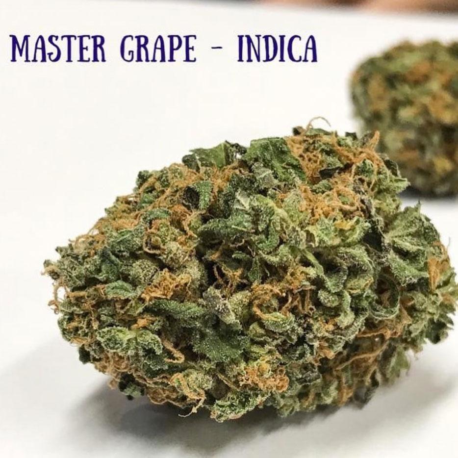 master-grape-strains