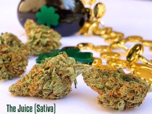 Happy St. Patricks Day! -The Juice (Sativa)-Gorilla Punch (Indica)-Fuschia Fantasy (Sativa)$5/GRAM while supplies last!