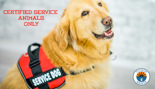certified service dogs inside dispensary only