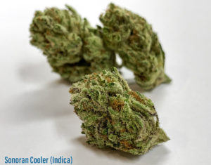 sonoran-cooler-strain-indica-sunday-goods