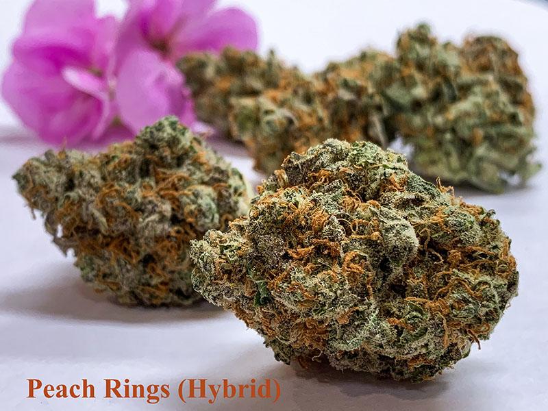 peach ringz strain tucson 2019