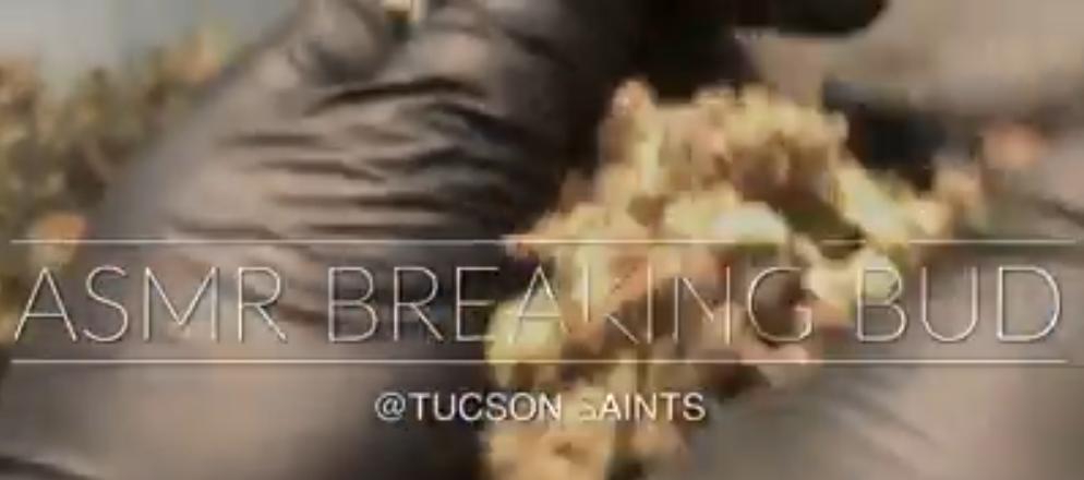 breaking bud ASMR TUCSON SAINTS