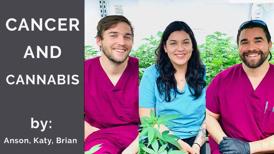 cancer and cannabis dispensary specialists talk about strains and treatment