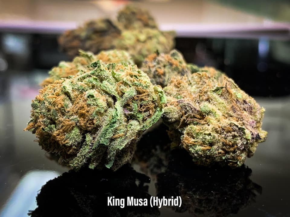 king musa hybrid strain