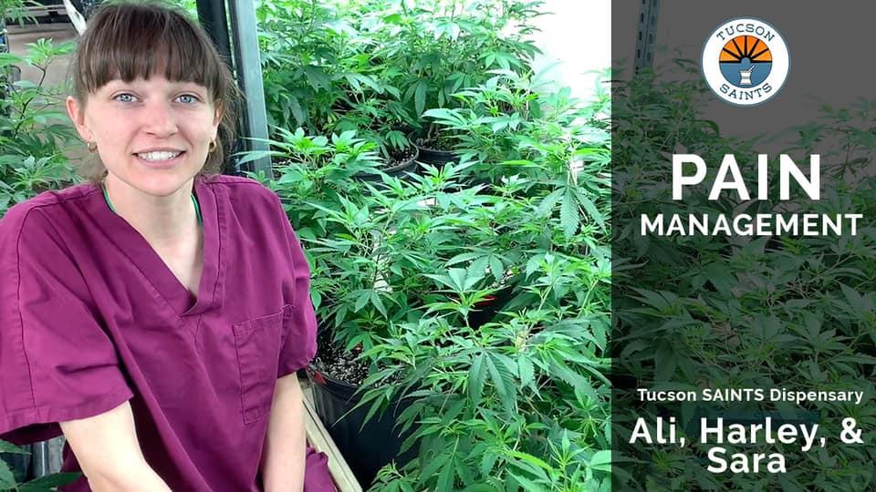 pain and cannabis managing pain inside saints tucson