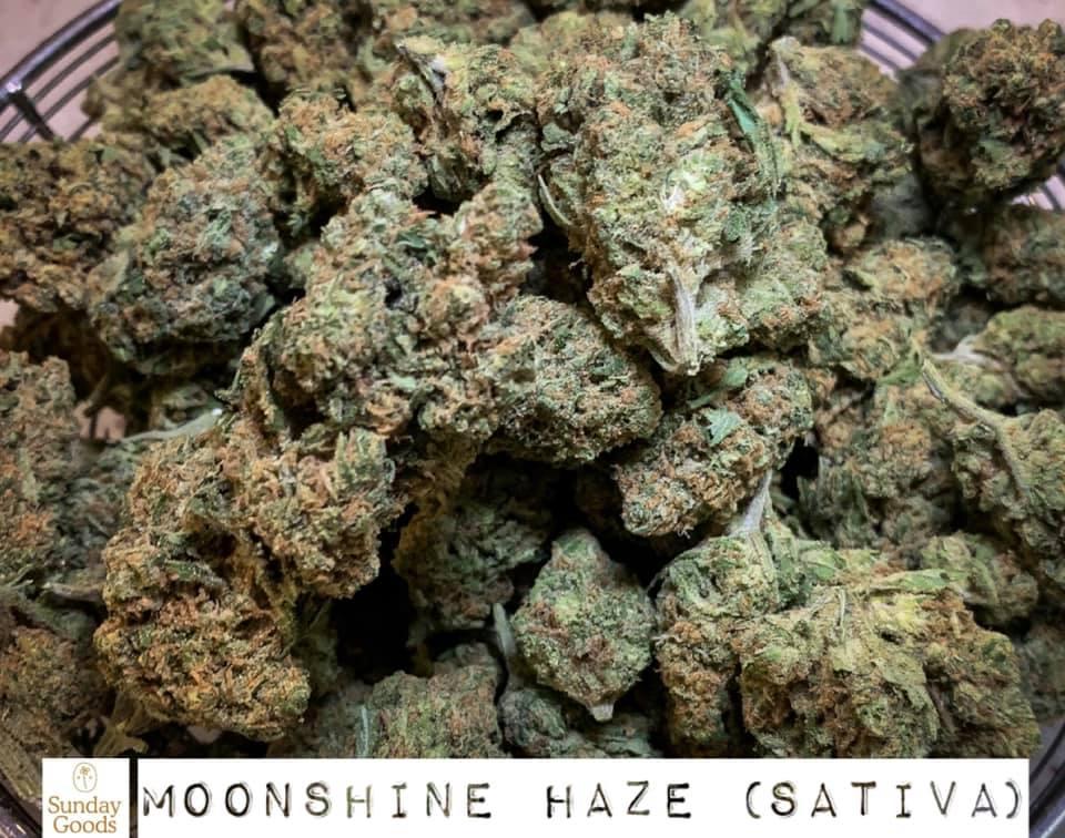 moonshine haze sativa strain saints