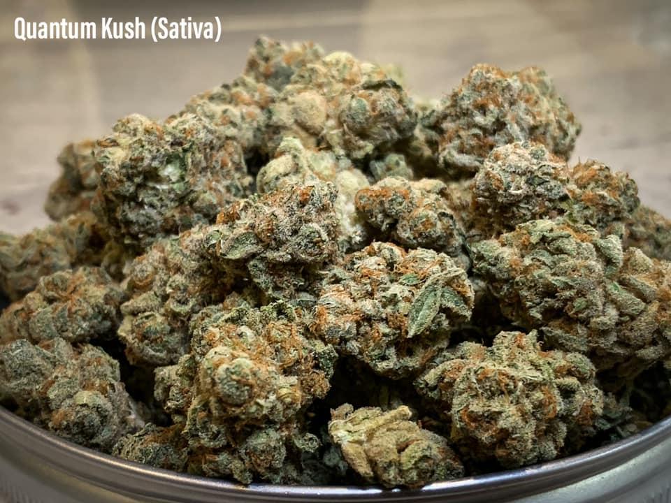 quantum kush sativa strain for pain