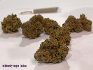 old fam purple strain 2020