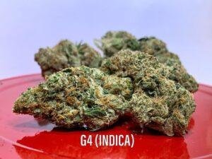 G4 INDICA STRAIN SAINTS AZ