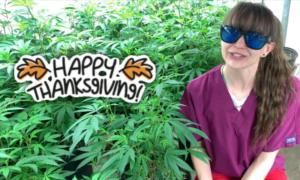 harley tucson saints thanksgiving 2020