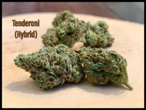 Tenderoni Hybrid Strain