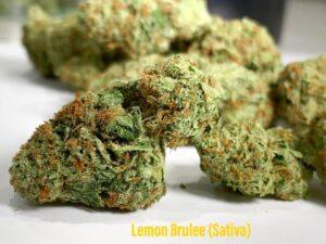 lemon brulee sativa strain saints dispensary 520