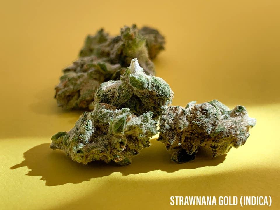 strawnana GOLD Strain Indica