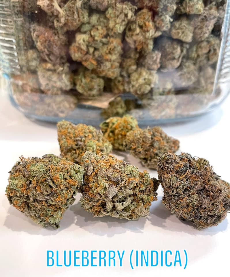BlueBerry INDICA