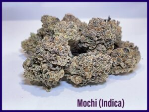 indica Mochi strain grown by dispensary