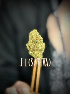 J-1 Sativa strain high energy