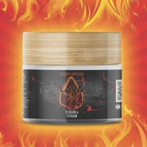 Lava Cake Indica Hybrid TruInfusion jar bud