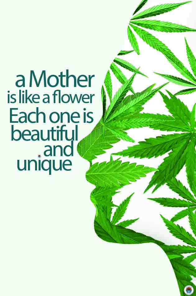 cannabis mothersday a Mother is like a flower each one is beautiful and unique