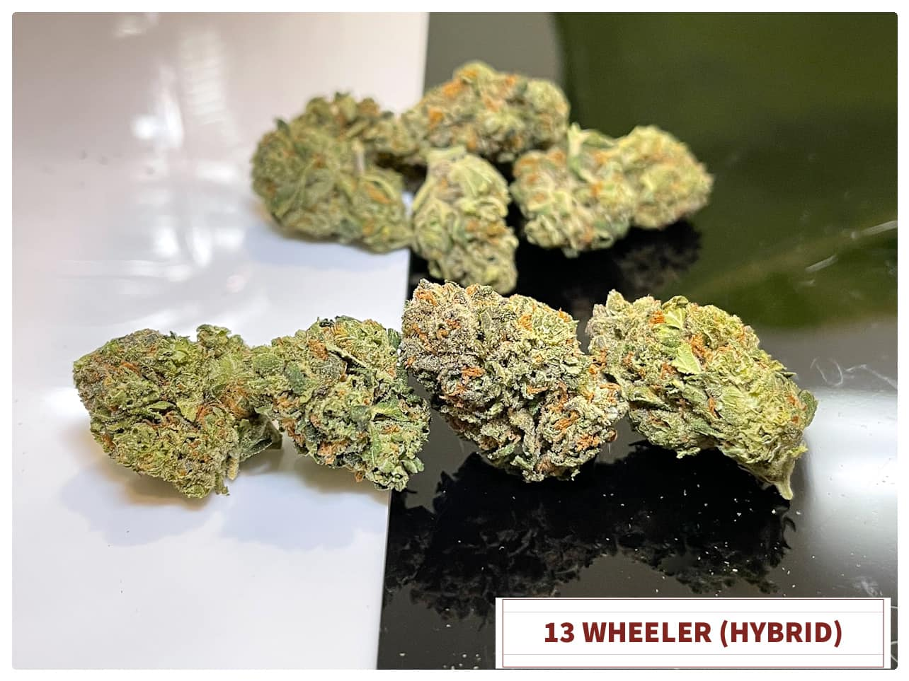 13 wheeler hybrid dispensary saints MMJ