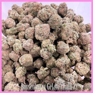 Boysenberry Gelato Indica Strain marijuana