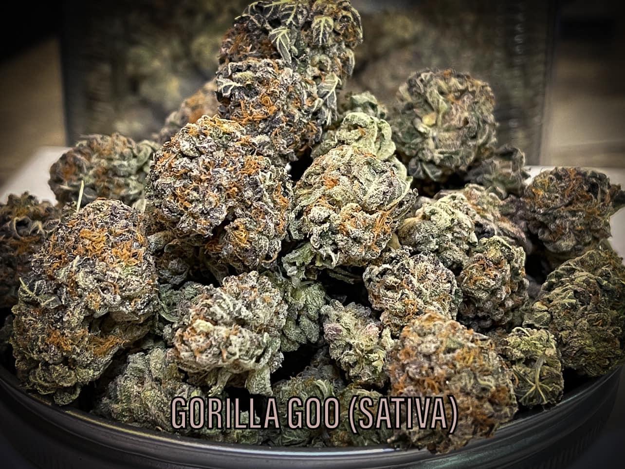 gorilla goo sativa strain for energy dispensary tucson