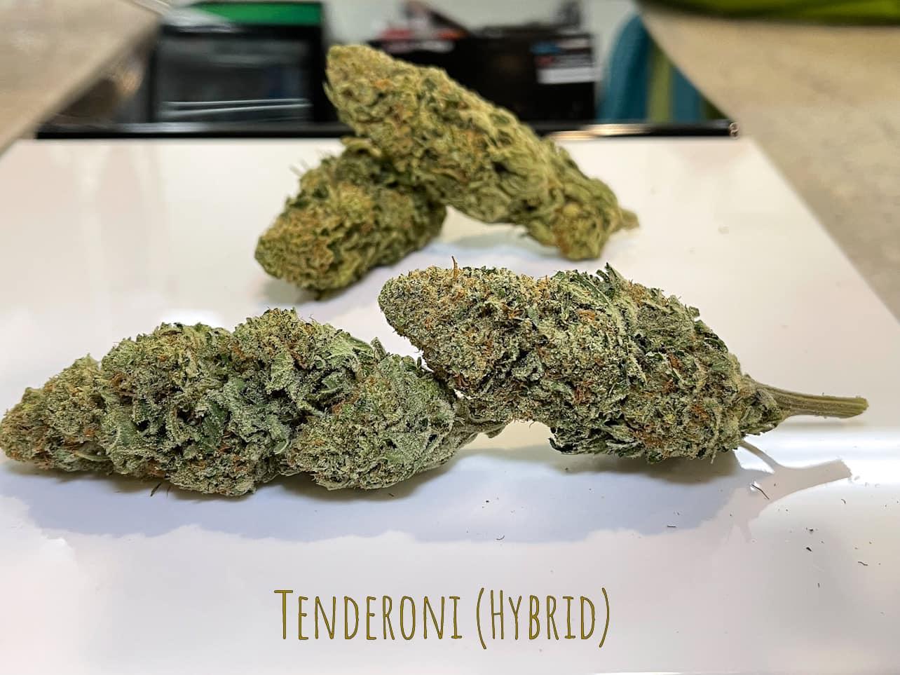 hybrid Calming Tenderoni