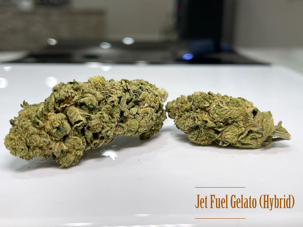 Jet Fuel Gelato strain