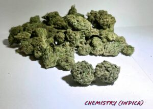 Chemistry Indica Strain