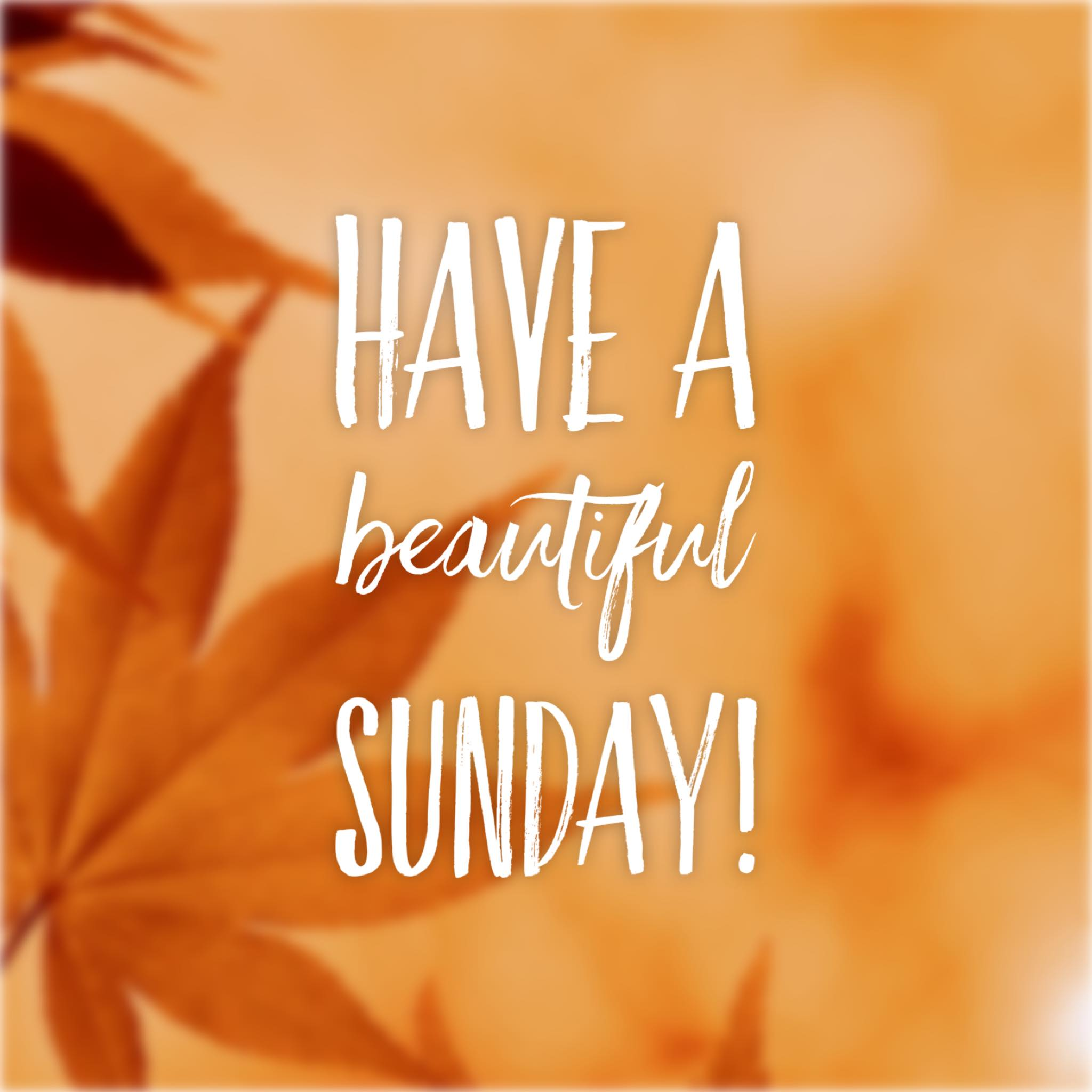 have a beautiful sunday post Suzy Tracy